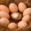 Egg series : One golden between nine ordinaries - zoom - Stock Photo