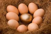 Egg series : One golden between nine ordinaries - zoom — Stock Photo