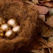 Stock Photo: Egg series : Seven golden eggs (with background)