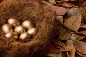 Egg series : Seven golden eggs (with background) — Stock Photo