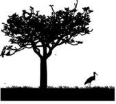 Stork in garden or park in spring silhouette — Stock Vector