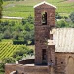 Laudun - Roman village in France — Stock Photo #11086319
