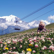 Stock Photo: Land of Mont Blanc