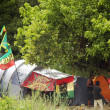 Stock Photo: Garance Reggae Festival 2012 in Bagnols sur Ceze, France