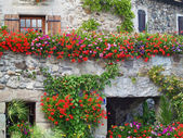 Beautiful House with Flowers in Yvoire, Geneva lake, France — Stock Photo