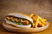 Hot dog y papas fritas — Foto de Stock
