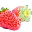 Strawberries fruits isolated — Stock Photo