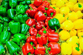 Colored bell pepper paprika — Stock Photo