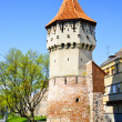 Defense tower in Sibiu — Foto de Stock