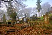 Vackra kyrkogård i höst — Stockfoto
