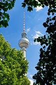 Fernsehturm (tv-tower) in Berlin — Stock Photo