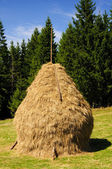 Traditional hay stack in romania — Stock Photo