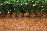 Brick wall temple — Stock Photo
