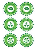 Green 100% organic natural eco product retro labels — Vettoriale Stock