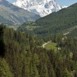 Mont Blanc - Aosta Valley, Italy — Stock Photo #11798609