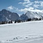 Ski slope, Dolomites - Italy — Stock Photo #11942136