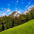 Scenic summer landscape in Berchtesgadener Land, Bavaria, Germany — Stock Photo
