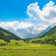 Beautiful nature landscape in the Alps in Austria. — Stockfoto