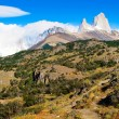 Scenic landscape with Mt Fitz Roy in Los Glaciares National Park, Patagonia, Argentina — Stock Photo #10749346