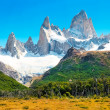 Landscape with Fitz Roy in Los Glaciares National Park, Patagonia, Argentina. — Stock Photo