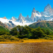 Nature landscape in Patagonia, Argentina — Stock Photo #10749605
