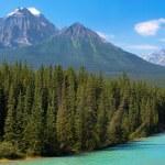 Постер, плакат: Wilderness in Banff National Park Alberta Canada