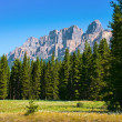 Nature landscape with Rocky Mountains in Jasper National Park, Alberta, Canada — Stock Photo #10749772