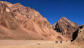 Hikers trekking in Andes in Aconcagua National Park, Argentina, South America — Stok fotoğraf