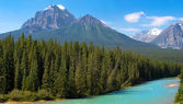 Wilderness in Banff National Park, Alberta, Canada — Foto Stock