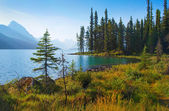 Mountain lake at sunrise in Alberta, Canada — Stock Photo