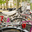 Bicycles parked in the street next to the park - Stock Photo