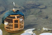 Empty cage on the river. — Stock Photo