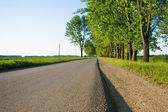 Straight empty road in afternoon at rural landscape — Stock Photo