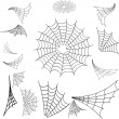 Web spider - Stock Vector