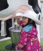 Having Fun Milking a Cow — Stock Photo