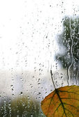 Autumn rain water drops glass abstract background — Stock Photo