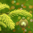 Christmas branch of green tree with bauble — Stock Photo