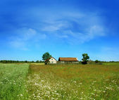 Alone home on meadow — Stock Photo