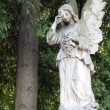 Ancient sculpture of angel on cemetery — Stock Photo