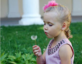 Little girl blows away dandelion in the park — Stock Photo