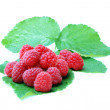Stock Photo: Ripe raspberries on green leaf on white background