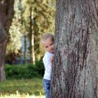 Stock Photo: Child hid behind tree in summer park