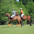 Polo match — Foto de Stock