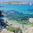 le lagon bleu - comino, Malte — Photo