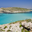 图库照片: The Blue Lagoon - Comino, Malta