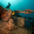 Anchor winch of the Thistlegorm. — Stock Photo