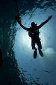Silhouette of an underwater photographer — Stock Photo