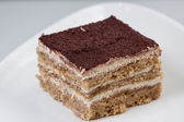 Macrobiotic tiramisu without sugar milk or egs — Stock Photo