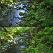Circular polarizer filter effect — Stock Photo