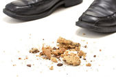 Cookie crumbs — Stock Photo